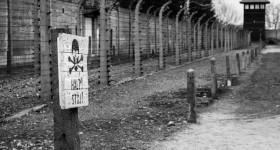 Auschiwtz halt sign